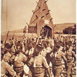 Aux combattants d'Afrique, la France reconnaissante. Le ministère des Armées publie «100 fiches biographiques à l'usage des maires de France».